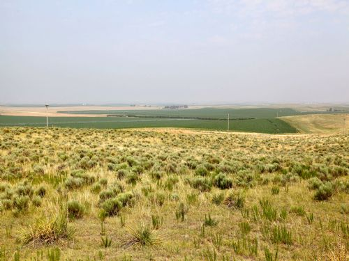 Anderson Pasture Land Auction : Holyoke : Yuma County : Colorado