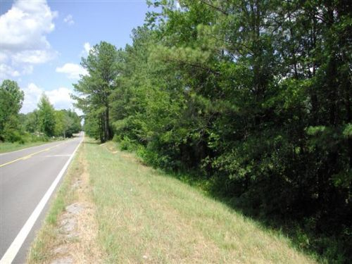 237 Acres Hunting Land Near I-59 : Steele : St. Clair County : Alabama