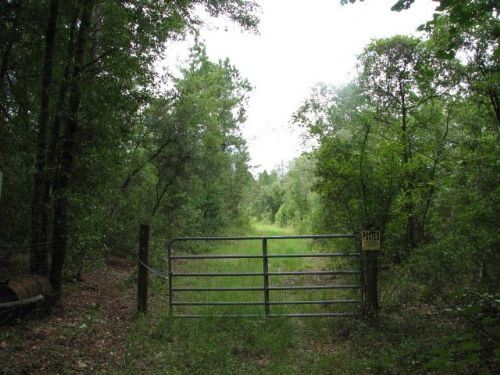 Hidden Oaks : Brooklet : Bulloch County : Georgia