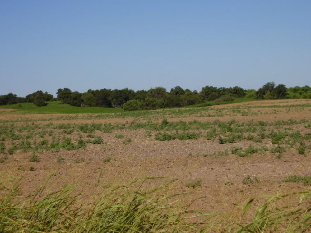 10 Acre Building Tracts Off Hwy 45 : Enid : Garfield County : Oklahoma