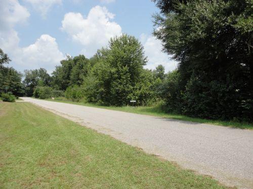 Development Potential In Bainbridge : Bainbridge : Decatur County : Georgia