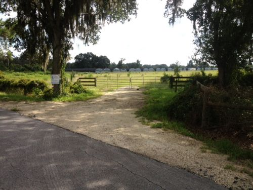 Owner Financing Beautiful 20 Acre : Farm for Sale : Webster