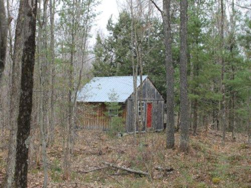 147 Acres Bordering State Forest : Diana : Lewis County : New York