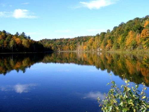 7 Acres Water Front On Fishing Pond : Hermon : Saint Lawrence County : New York