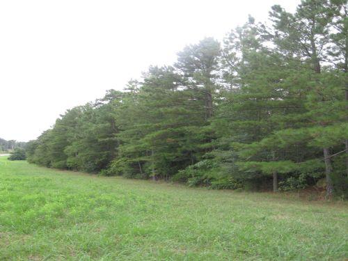 Large Tract Just South Of Pittsboro : Pittsboro : Chatham County : North Carolina