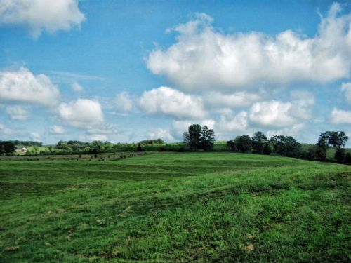 8.28 Acres Of Rolling Pastureland : Chesnee : Spartanburg County : South Carolina