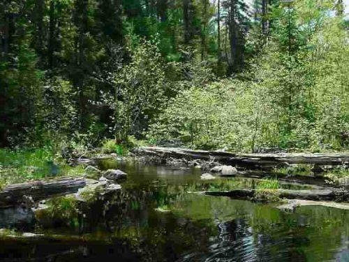 Tbd Dommer Creek Mls#1068402 : Nestoria : Baraga County : Michigan