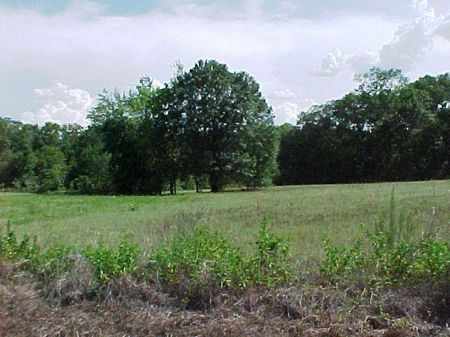 Home Site : Ashford : Houston County : Alabama