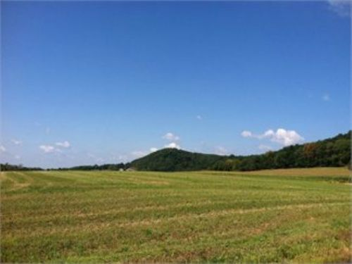 109+/- Acre Land Auction : Berwick : Columbia County : Pennsylvania