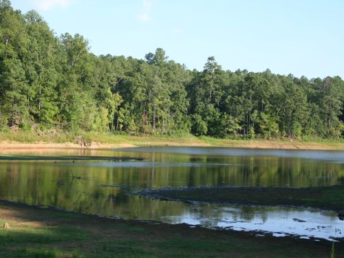 42.77 Ac Bordering Corps Property : Mccormick : McCormick County : South Carolina