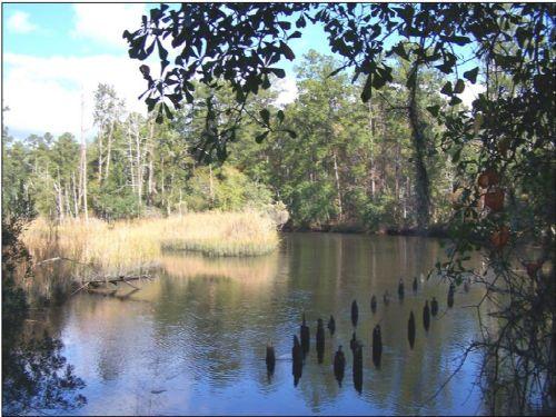 Mont Repose Plantation : Coosawhatchie : Jasper County : South Carolina