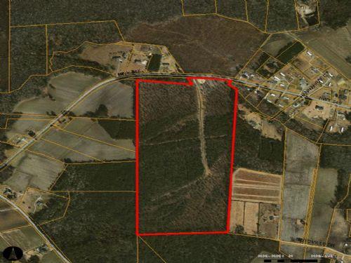 Goldsboro Farms : Conway : Horry County : South Carolina