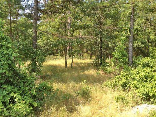 Peal Creek Properties Tract 1 : Clayton : Pushmataha County : Oklahoma