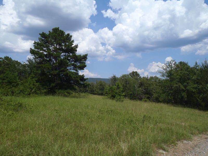 Peal Creek Properties Tract 2 : Clayton : Pushmataha County : Oklahoma