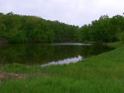 167 Ac. Great Hunting, Nice Lake : Nebo : Pike County : Illinois