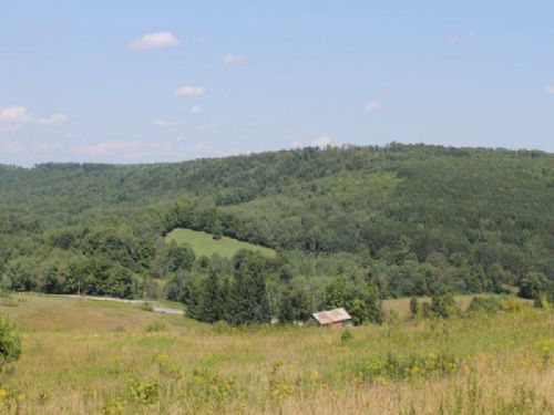 26 Acres Country Acreage With Views : Columbus : Chenango County : New York