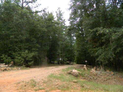 47.6 Ac Hunting Tract/creek : Carlton : Oglethorpe County : Georgia