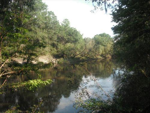 2 Miles Ocklocknee River Frontage : Cairo : Grady County : Georgia