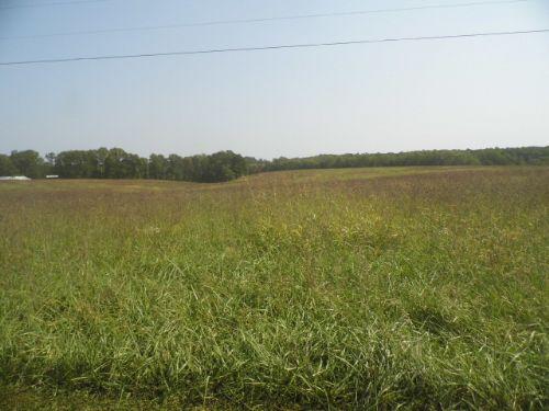 Austin's Pasture : Buckingham : Buckingham County : Virginia