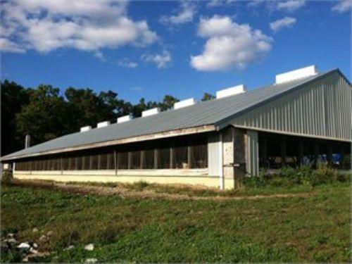 20+/- Acres Turn Key Veal Operation : Turbotville : Montour County : Pennsylvania