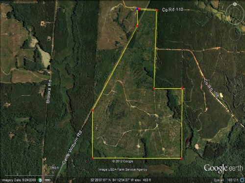 Timberland Hunting Tract : Oglethorpe : Macon County : Georgia