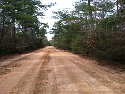 60 Acres : New Augusta : Perry County : Mississippi