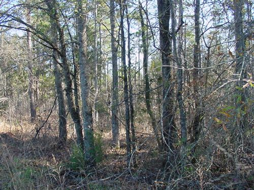 Wooded Lot Near The Lake : Lincolnton : Lincoln County : Georgia