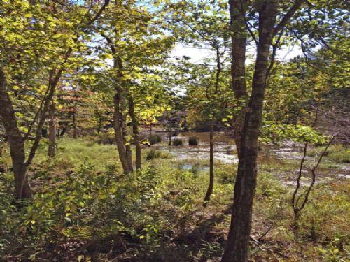 Speer Road Properties Tract 1 : Speer : Choctaw County : Oklahoma