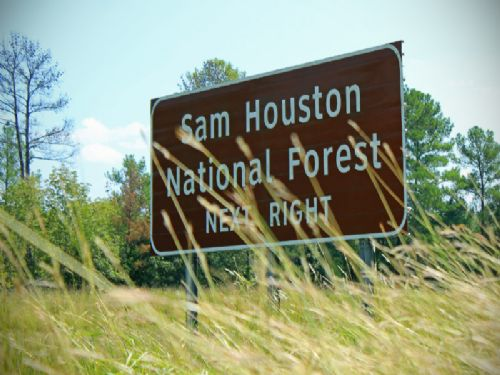 3,302 Ac I-45 | Houston Development : New Waverly : Walker County : Texas