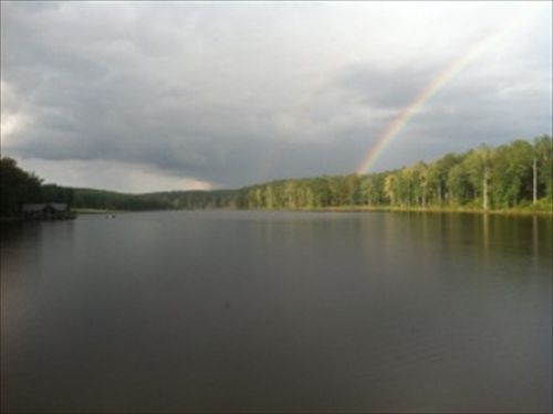 Magnificent Estate- 47 Acre Lake : Monticello : Jasper County : Georgia