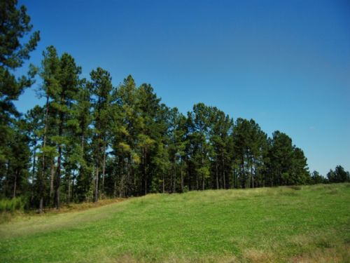762 Acre Recreational Tract : Union : Union County : South Carolina