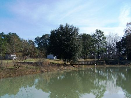 Parkers Mill Farm : Tallahassee : Grady County : Georgia