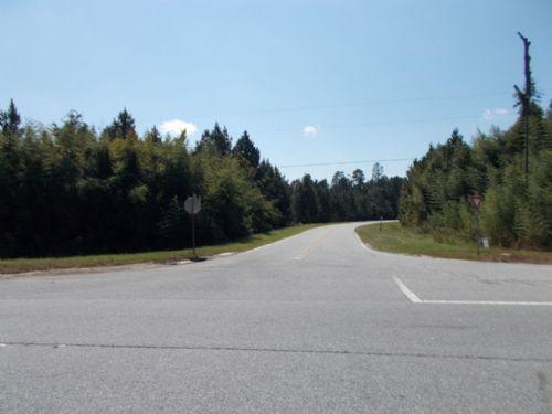 7.84 Acres, Double Highway Frontage : Gardi : Wayne County : Georgia