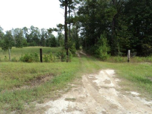 10 Acre Tract On Mud Road : Brooklet : Bulloch County : Georgia
