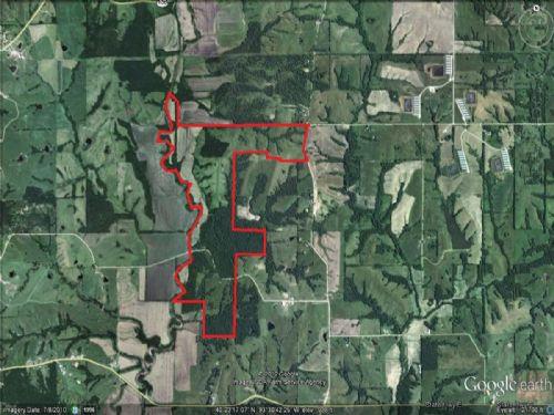 503 Acre Combination Farm : Princeton : Mercer County : Missouri