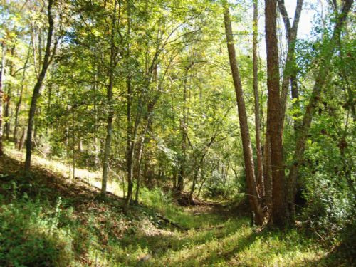 32.1 Acre Recreational Tract : Gaffney : Cherokee County : South Carolina
