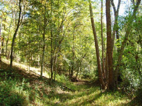 32.1 Acre Recreational Tract : Gaffney : Cherokee County : South Carolina