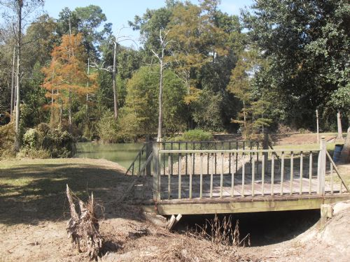 Farm With Creeks, Ponds And House : Newton : Baker County : Georgia