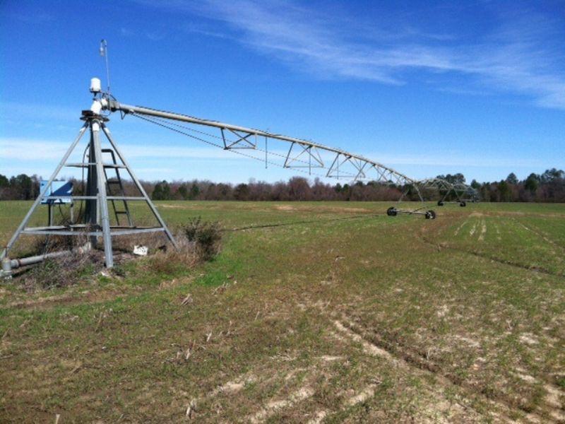 Irrigated Farm- 24k Annual Lease : Abbeville : Wilcox County : Georgia