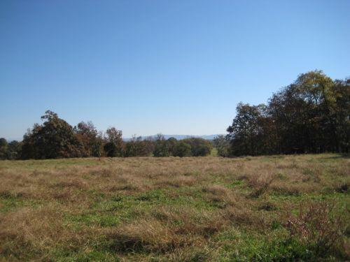 42.22+/- Acres Pasture : Calhoun : Gordon County : Georgia