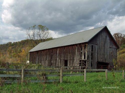 A Hunter's Dream : Viola : Richland County : Wisconsin