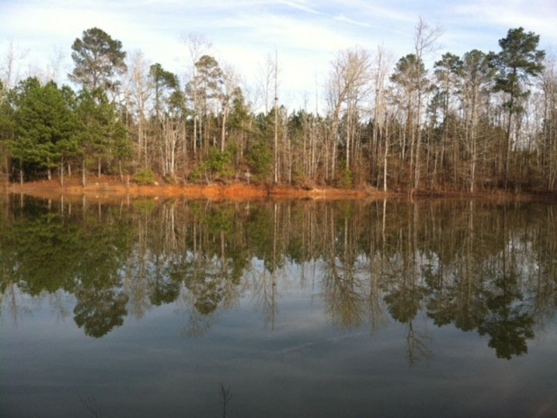 60 Acres With Pond And Bunkhouse : Oglethorpe : Macon County : Georgia