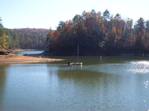 30.6 Acres On Lake Allatoona : White : Bartow County : Georgia