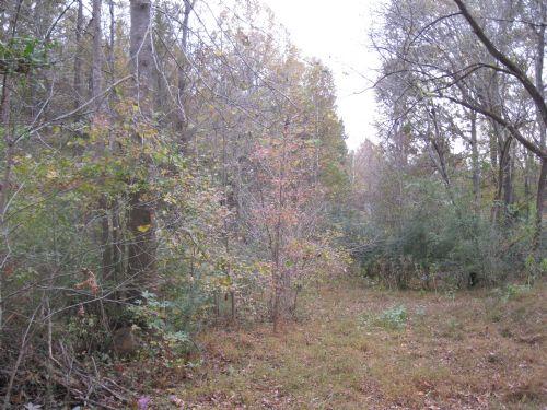10+ Acres : Pittsboro : Chatham County : North Carolina