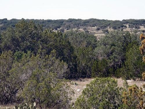 Hunting, Retirement, Rocksprings : Rocksprings : Edwards County : Texas