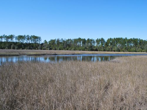 170 Acres With Water Front : Brunswick : Glynn County : Georgia