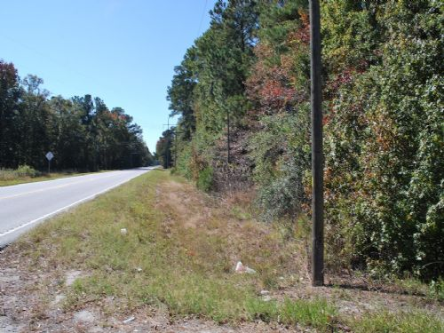 800 Acres, Timber And Creek Front : Brunswick : Glynn County : Georgia