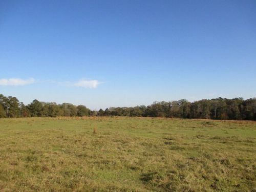 85 +/- Ac, Cr 2290 : Goshen : Pike County : Alabama
