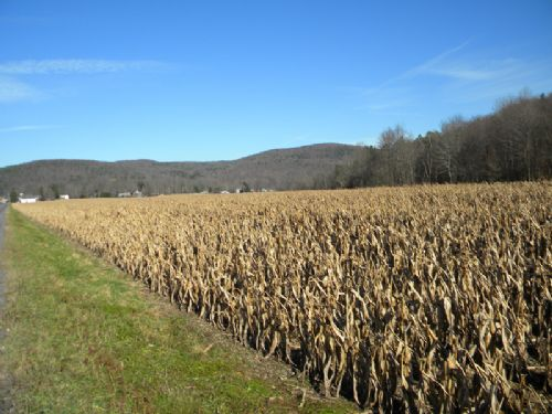 36 Acres Farmland Older Barn Creek : Caroline : Tompkins County : New York