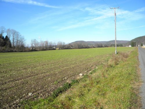 15 Acres Tillable Farmland Level : Caroline : Tompkins County : New York